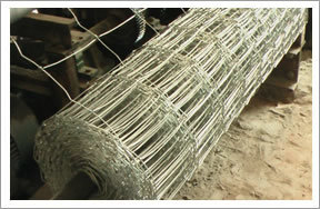 Galvanized Cattle Fence (Hot Selling)