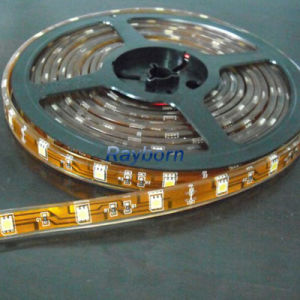 5050SMD 12V LED Strip Light /CE RoHS Certificate 24 Volt Flexible LED Strip Lighting pictures & photos