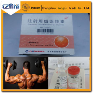 Hormone Human Chorionic Gonadotropin H-Cg 5000iu/Vial for Weight Loss pictures & photos