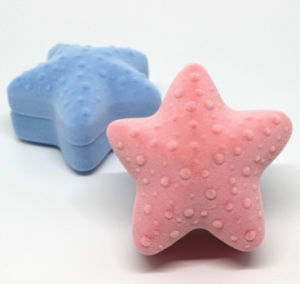 Starfish Shaple Jewellery Gift Cases pictures & photos
