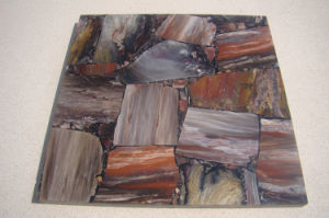 Natural Polished Tiles Fossil Wood Tiles for Wall Floor pictures & photos
