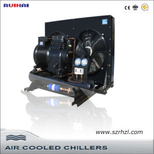 Low Temperature Screw Type Parallel Condensing Unit pictures & photos