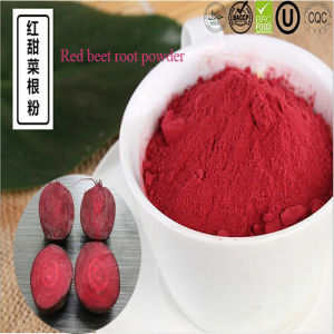 Instant Juice Additives Red Beet Root Powder pictures & photos