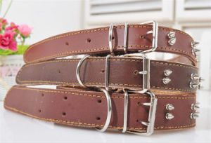 Customized Dog Collar and Leash pictures & photos