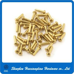 OEM Factory Copper & Brass Round Solid Head Blind Rivet pictures & photos