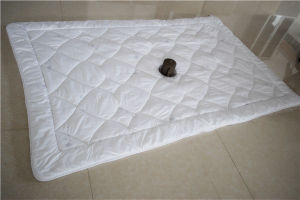 Special Funtional Nano Anti-Bacterial Quilt Hot Selling in 2016 pictures & photos