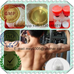 Testosterone Isocaproate 15262-86-9 Test ISO for Anti-Inflammatory 100mg/Ml 200mg/Ml pictures & photos