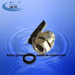 Sanitary Male/Female Butterfly Valve (RJT) pictures & photos
