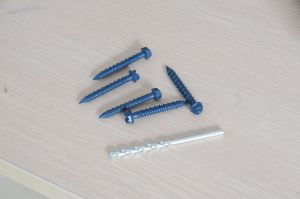 Hi-Low Thread Concrete Screw, Tapcon Screw pictures & photos