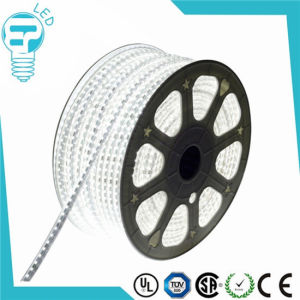 AC220V AC110V LED Rope Light SMD5050 IP65 High Voltage Flexible LED Strip pictures & photos