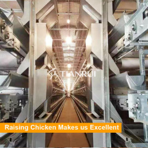 H Type Galvanized Automatic Chicken cage Poultry Equipment for Layer pictures & photos