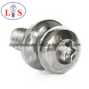 Ss 304 Torx Recess Bolt with Washers pictures & photos