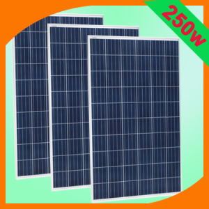 High Quality Low Price 250W/260W Poly Solar Panel/Solar Module/PV Module/PV Panel for Solar System/Solar Farm pictures & photos