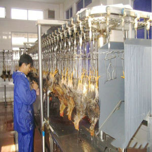 Automatic Full Set Slaughtering Equipment for Prefab Slaughtering Plant pictures & photos