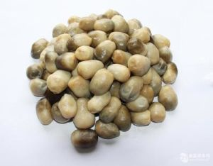 Wholesale Canned Halves Straw Mushroom pictures & photos