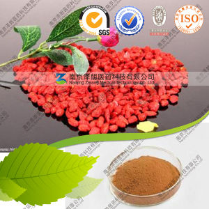Distributor Bulk Price Berries Goji Goji Berry Powder Supply pictures & photos