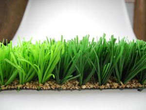 Soccer Artificial Grass/Football Artificial Grass, Sport Grass (W50) pictures & photos