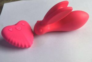 Dolphin Lovers Sex Toys pictures & photos