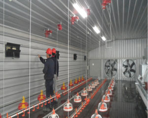 Prebab Chicken Shed with Automatic Controlled Equipments pictures & photos