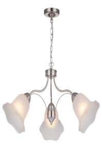Hot Sale New Product Chandelier Light