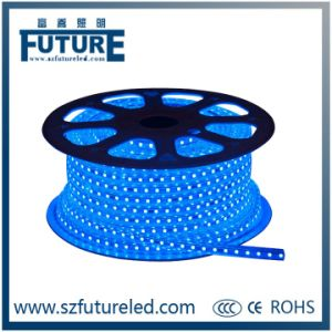 SMD 5050 Waterproof LED Strip with CE&RoHS &CCC pictures & photos