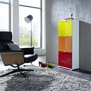 Color Mixed Shoe Storage Cabinet (HF-EY08198) pictures & photos