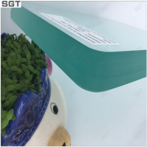10mm Toughened Glass Specialized in Shower Glass Polished Edges pictures & photos