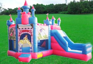 Cheap Infatable Bouncer with Slide/Inflatable Combo Bouncer/Commercial Inflatable Bouncer Frozen for Sale pictures & photos