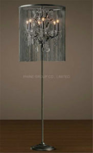 Decorative Metal Floor Lighting for Bedside or Study pictures & photos