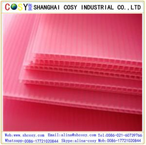 Coroplast 4mm PP Corrugated Sheet PP Hollow Sheet pictures & photos