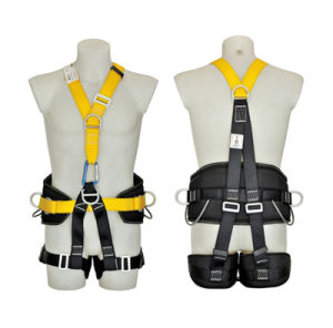 4 D-Rings Full Body Safety Harness pictures & photos