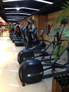 Indoor Gym Elliptical Trainer Fitness Machine Ft-6806r pictures & photos