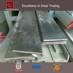 Ss304 Stainless Steel Flat Bar (CZ-F06) pictures & photos