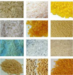 Enriched Rice Processing Line pictures & photos