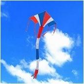 Sky Kite - Delta pictures & photos