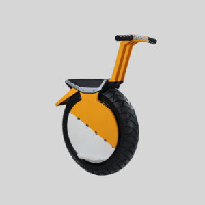 Electric Vehicle, Smart Unicycle, Self Balancing Unicycle Scooter for Boys and Girls Holiday Gift pictures & photos