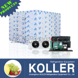 Koller 3tons Clod Room for Fresh-Keeping During The Transport of Flowers/Fruits/Vegetables pictures & photos