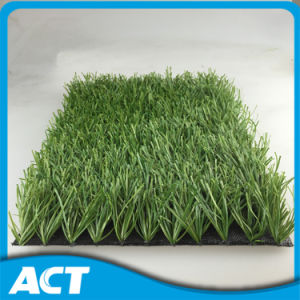 Football Grass, Top Quality and Good Football Performance Mds50 pictures & photos
