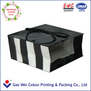 Coated Paper Shopping Bag Manufacturer in Foshan China pictures & photos