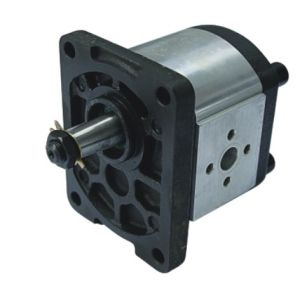 Cbts-F304 Hydraulic Pump Gear Pump pictures & photos