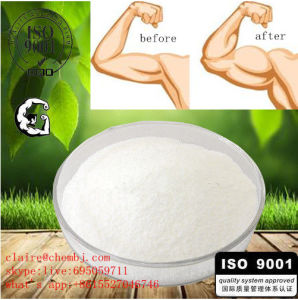 Prohormone H-Drol / Halodrol-50 / Turinadiol/ Halodrol Powder pictures & photos