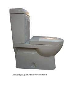 Two Piece Ceramic Toilet Washdown Toilet Water Closet Wc 00119 pictures & photos