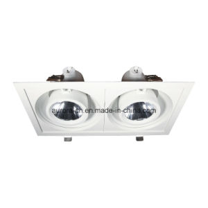 LED Ceiling Light Double Head Dimmable LED Down Light (S-D0026-D)