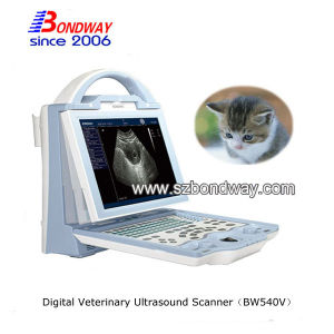 Veterianry Ultrasound Cow Pregnancy Test Veterinary Products pictures & photos