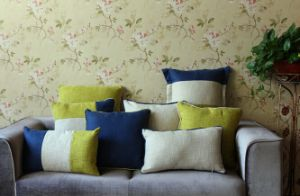 High Quality Sofa Decoration Cushion pictures & photos