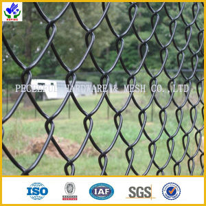 Chain Link Fence / Diamond Mesh (HPZS-1099) pictures & photos