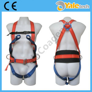 En361 High-Quality Construction Safety Belt Yl-S326 pictures & photos