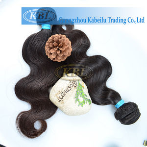 Reasonable Price Brazilian Human Virgin Hair pictures & photos