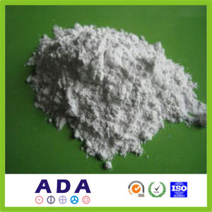 Antioxidant Powder