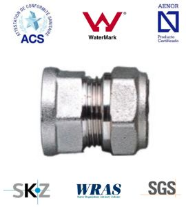 Compression Fitting - Brass Fitting - Plumbing Fitting (Female Straight) pictures & photos